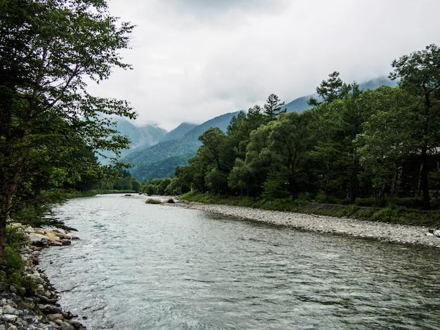 Widok strumienia przepływa przez las na górze z chmurnym tłem w kamikochi w japonii
