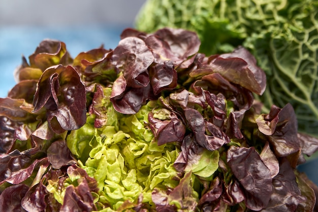 Widok świeżych zielonych warzyw