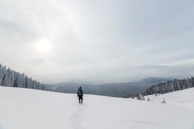 Widok turystycznego turysty w ciepłej odzieży z plecakiem chodzącym w górę pokrytymi śniegiem na świerkowym lesie i pochmurnym niebie z tyłu.
