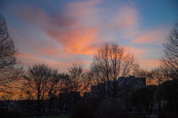 Widok ulicy wieczorem pod pięknym ciemnoniebieskim pochmurnym niebem, rosja