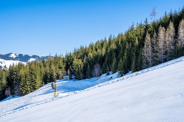 Widok wysokich drzew na zaśnieżonej górze obok ośrodka narciarskiego w ciągu dnia