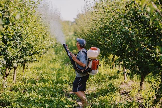 Widok z boku dojrzałego chłopa rasy kaukaskiej w ubraniu roboczym, kapeluszu i nowoczesnej maszynie do rozpylania pestycydów na plecach rozpylającej owady w sadzie.