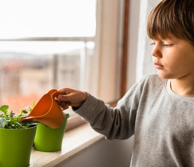 Widok z boku dziecka podlewającego rośliny przy oknie