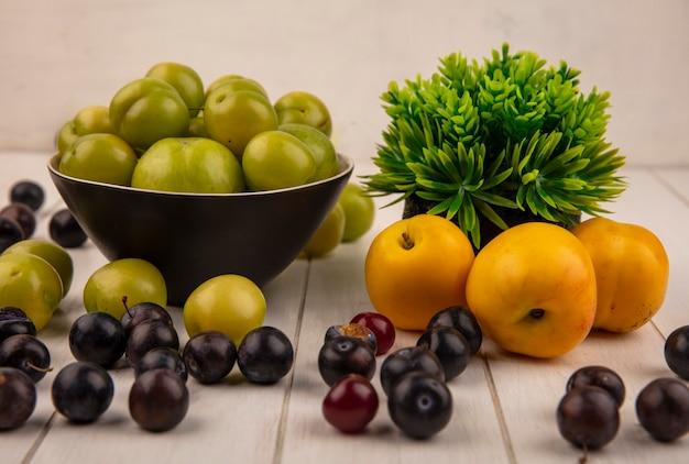 Widok z boku na świeże zielone śliwki wiśniowe na miskę ze słodkimi brzoskwiniami i ciemnofioletowymi tarninami na białym tle na szarym tle drewnianych