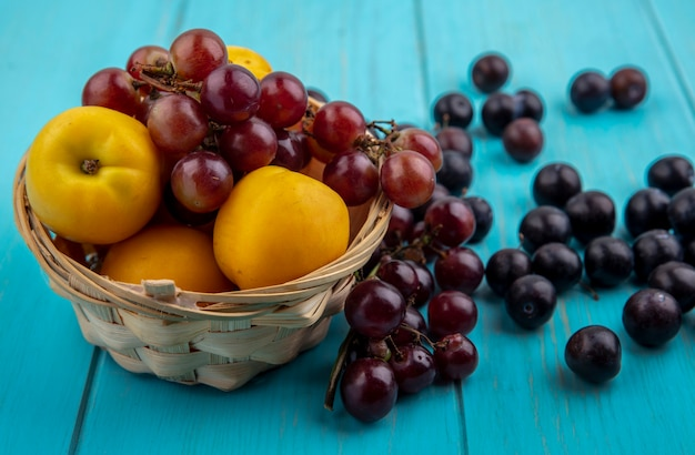 Widok z boku owoców jako nektakoty i winogron w koszu i na niebieskim tle