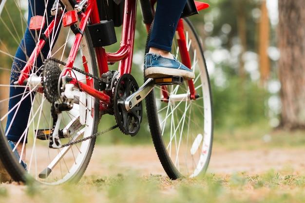 Widok z dołu roweru na leśnej drodze