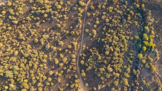 Widok z drona na pustynny krajobraz ze ścieżką przez niego, suchy krajobraz z niewielką tropikalną roślinnością