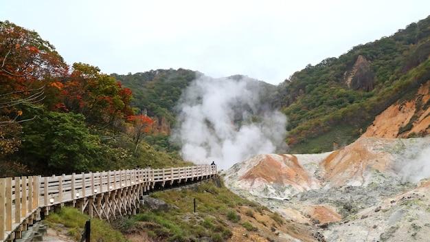 Widok z gorących źródeł w japonii