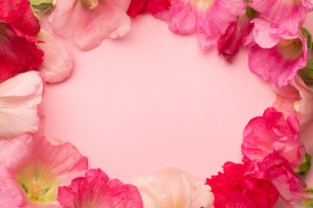 Widok z góry asortyment kwiatów