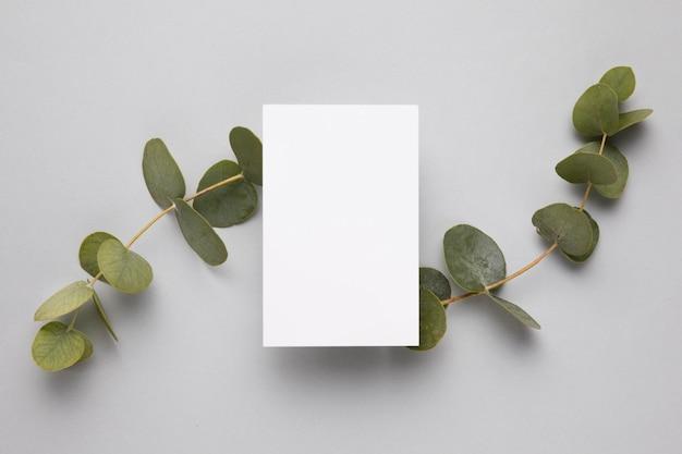 Widok z góry biała ramka otoczona liśćmi