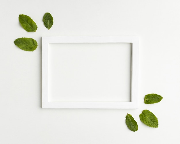Widok z góry biała ramka z liśćmi