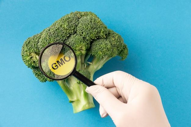 Widok z góry brokułów zmodyfikowanych gmo