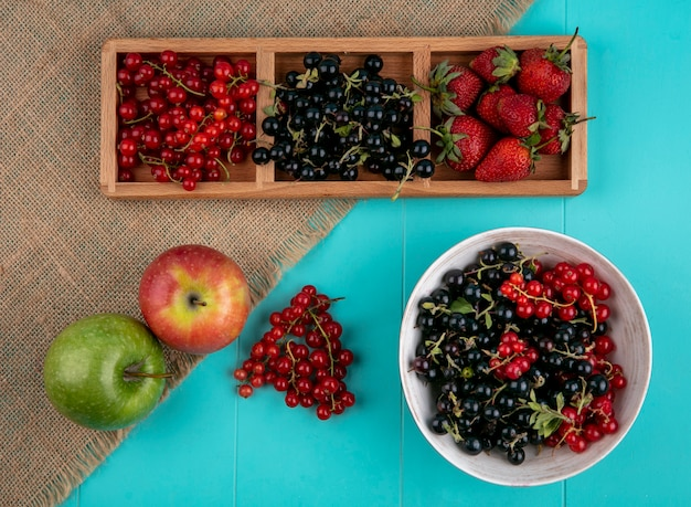 Widok z góry czerwone i czarne porzeczki z truskawkami i jabłkami na niebieskim tle