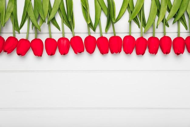 Widok z góry czerwone tulipany wyrównane na stole