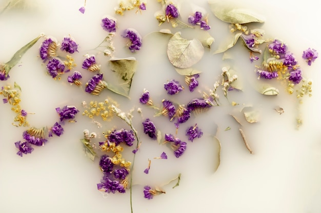 Widok z góry delikatne fioletowe kwiaty w białej wodzie