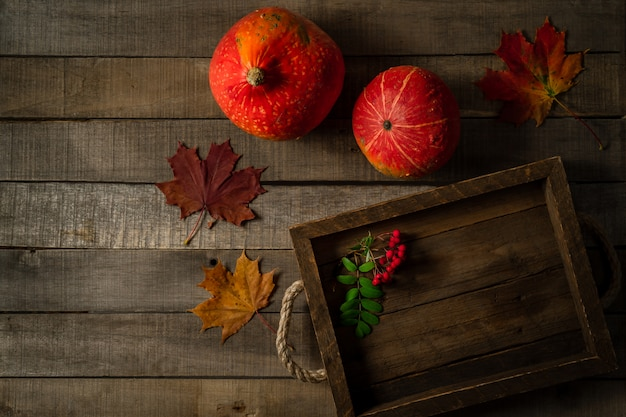 Widok z góry dwóch jesiennych dyń, liści klonu i gałęzi jagód jarzębiny