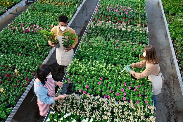 Widok z góry grupy osób pracujących w szklarni w centrum ogrodniczym, koncepcja koronawirusa.