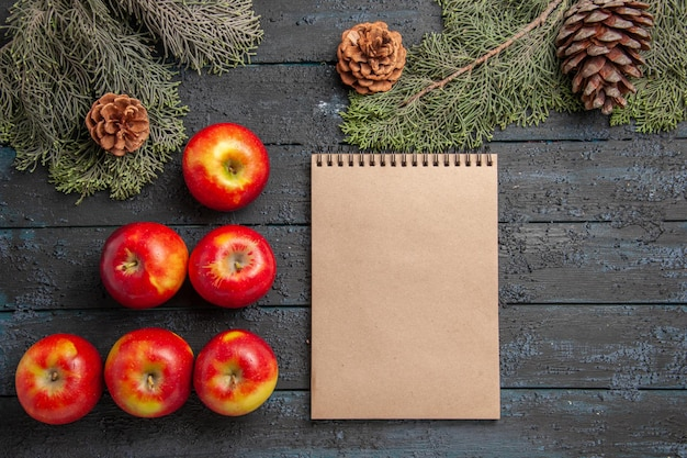 Widok z góry jabłka i notatnik oraz sześć żółto-czerwonych jabłek na szarej powierzchni obok świerkowych gałęzi i szyszek