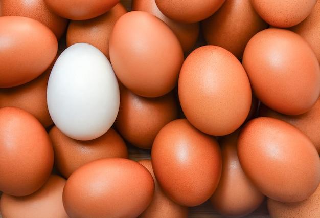 Widok z góry jednego białego jajka otoczonego brązowymi jajkami
