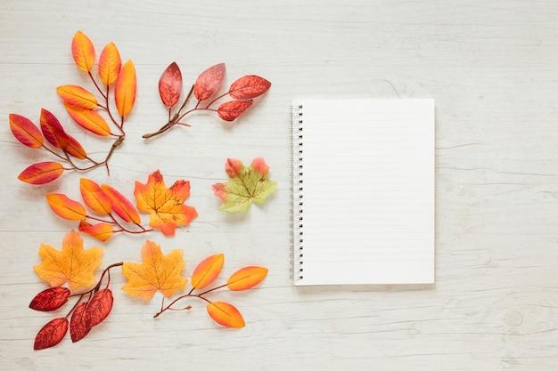 Widok z góry jesienne liście z notatnikiem