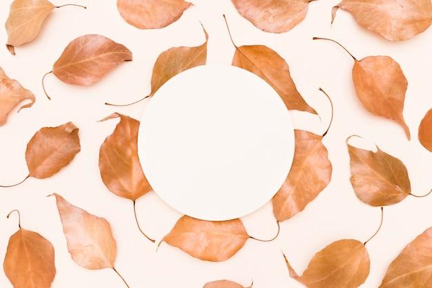 Widok z góry jesiennych liści w kręgu
