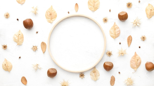 Widok z góry kasztanów z jesiennych liści i miejsca na kopię