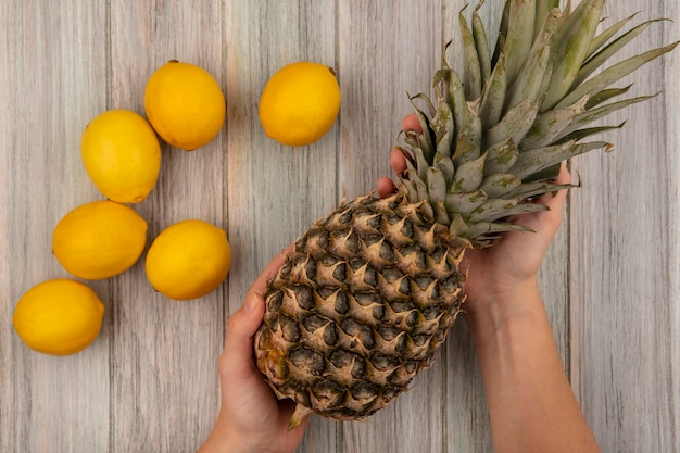 Widok z góry kobiecych rąk trzymających ananasa z cytrynami na białym tle na szarej drewnianej ścianie