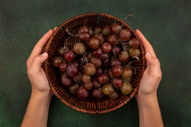 Widok z góry kobiecych rąk trzymających wiadro świeżych i zdrowych winogron na zielonej powierzchni