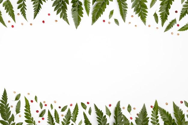 Widok z góry kolekcja liści z miejsca kopiowania