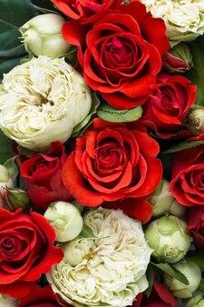 Widok z góry kolorowych kwiatów