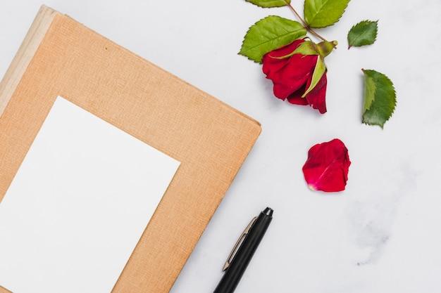 Widok z góry książki i kwiat