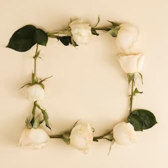 Widok z góry kwadratowej ramki róży