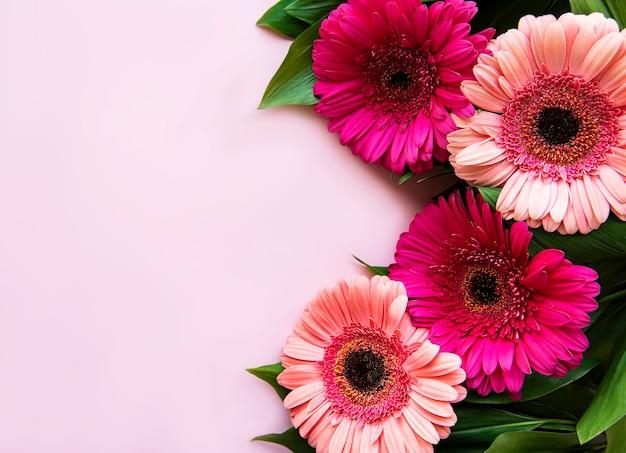 Widok z góry kwiaty