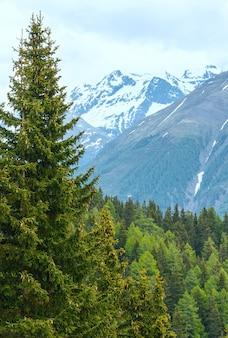 Widok z góry lato góry bettmeralp (szwajcaria).