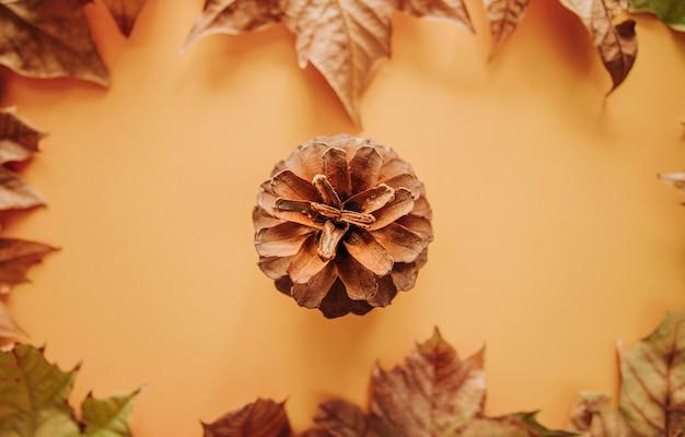 Widok z góry leżał płasko jesień koncepcja szablonu, kolorowe liście klonu i suchy szyszka