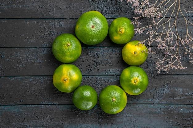 Widok z góry limonki i gałęzie zielone limonki ułożone w okrąg obok gałęzi drzew