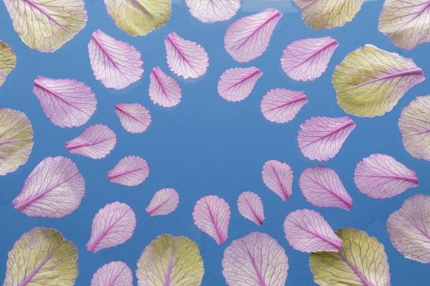 Widok z góry liści roślin z miejsca na kopię
