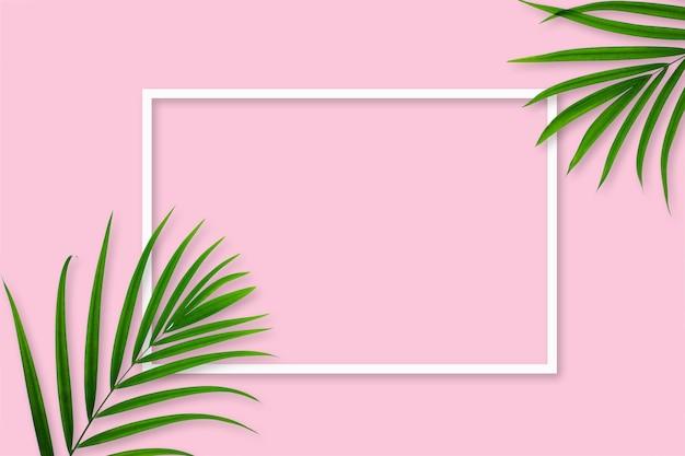 Widok z góry liścia tropikalnej palmy z białą ramką na pastelowym różowym tle
