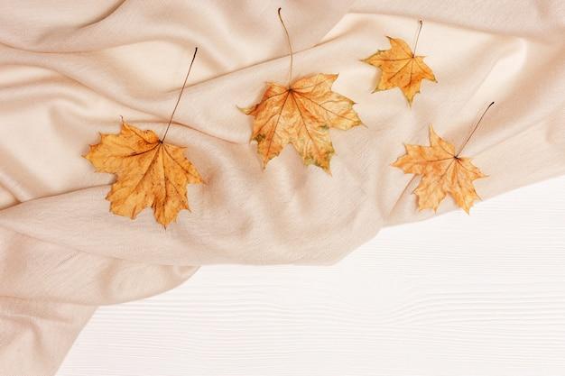 Widok z góry liście klonu