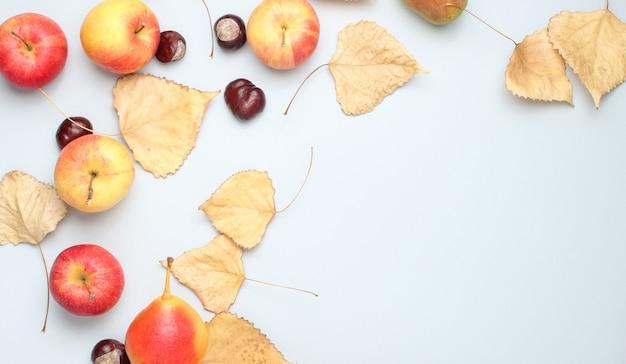 Widok z góry martwa jesień. jabłka, gruszki, opadłe liście, kasztany na szarym stole. skopiuj miejsce