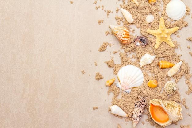 Widok z góry muszelek z piaskiem
