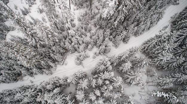 Widok z góry na fantastyczny gęsty śnieżny las świerkowy