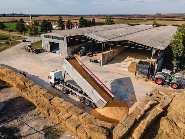 Widok z góry na farmę zwierząt. są stodoły z kukurydzą i pojazdy transportujące kukurydzę.