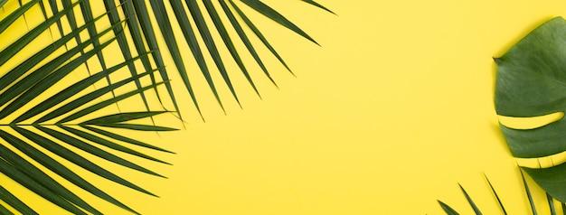 Widok z góry na gałąź tropikalnych liści palmowych na białym tle na jasnożółtym tle z miejsca na kopię.