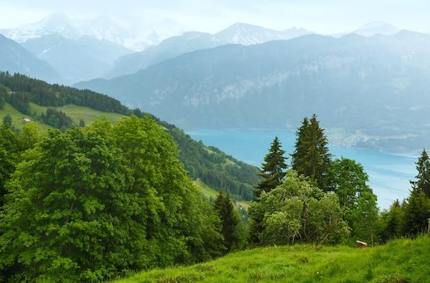 Widok z góry na jezioro brienz lub brienzersee wieczorem pochmurne lato (berno, szwajcaria).