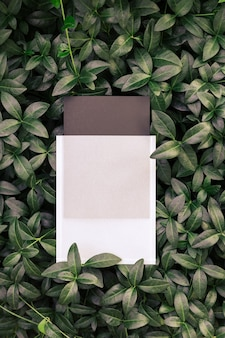 Widok z góry na kwadratową ramę kreatywny układ tropikalnych roślin i liści barwinka z czarnym pustym c...