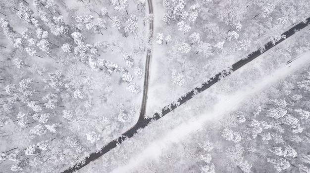 Widok z góry na las w zimie. zimowy krajobraz w lesie. latanie nad trasą narciarską w zimowym lesie. widok z góry na drogę narciarską. dron podąża za chodzącą narciarzem na torze narciarskim. ziemie zimowe