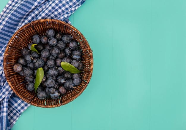 Widok z góry na mały kwaśny owoc z ciemną skórką tarniny na niebieskim tle z miejscem na kopię