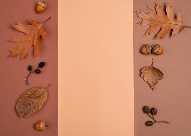 Widok z góry na monochromatyczną różnorodność liści z miejscem na kopię