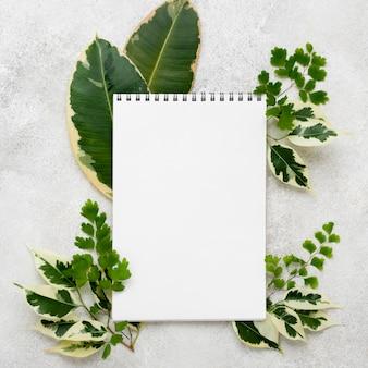 Widok z góry na notatnik z pięknymi liśćmi roślin